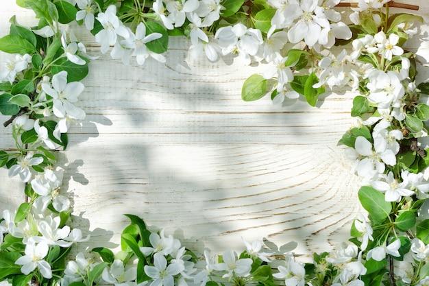 Fundo branco de madeira. flores de maçã na borda do quadro Foto Premium
