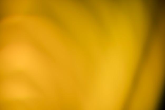 Fundo claro brilhante turva Foto gratuita
