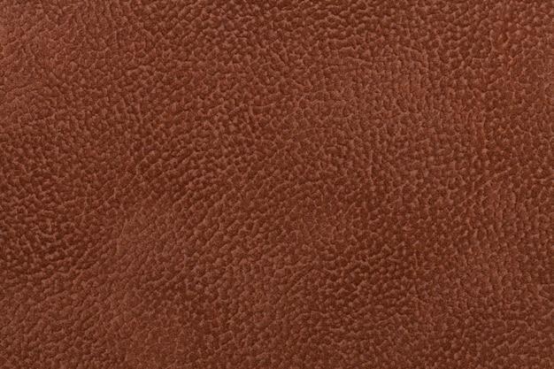 Fundo da tela do marrom escuro decorada com animal do revestimento. Foto Premium