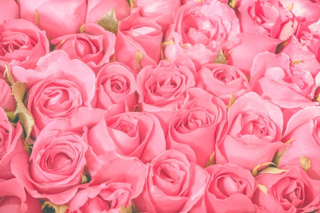Fundo de buquê de rosas Foto Premium