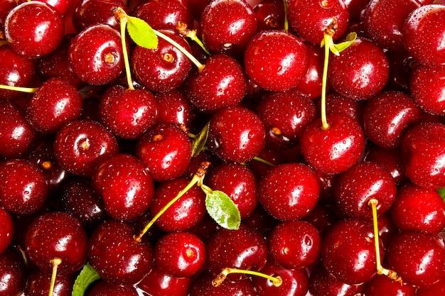 Fundo de cerejas maduras. fruta de verão de foco seletivo. Foto Premium