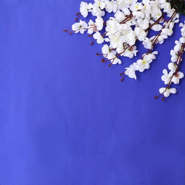 Fundo de flores coloridas Foto gratuita