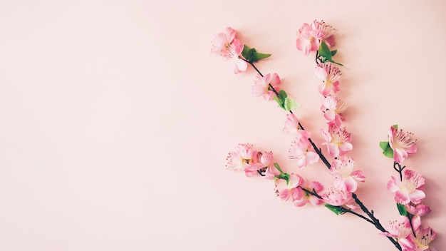 Fundo de flores de primavera com copyspace Foto gratuita