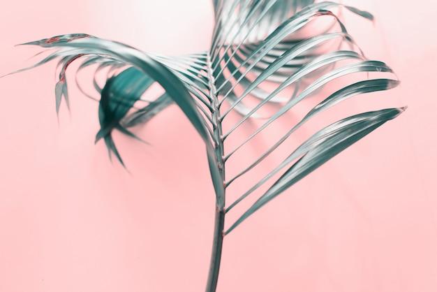 Fundo de folha de palmeira de onda tropical flat lay top Foto Premium