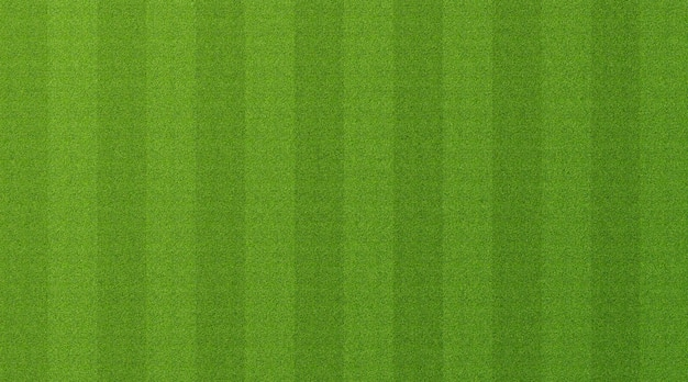 Fundo de grama verde Foto Premium