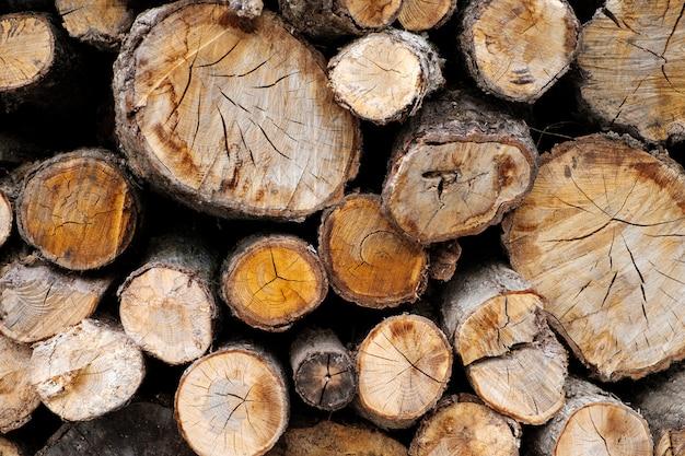 Fundo de madeira log corte Foto gratuita