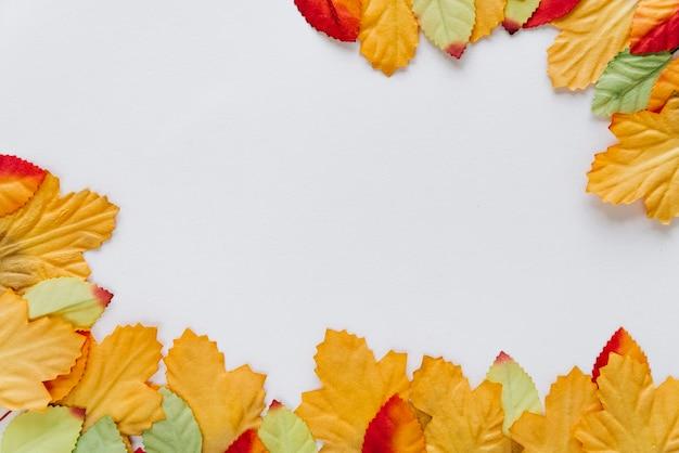 Fundo de natureza com folhas Foto gratuita