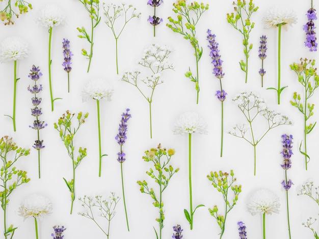 Fundo de padrão de flores Foto Premium