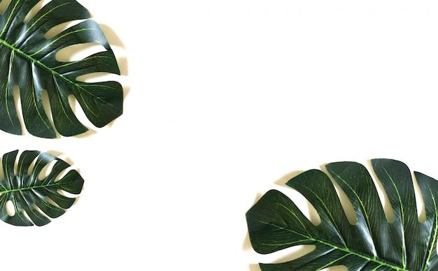 Fundo de padrão de folha verde. flat lay, layout da natureza Foto Premium