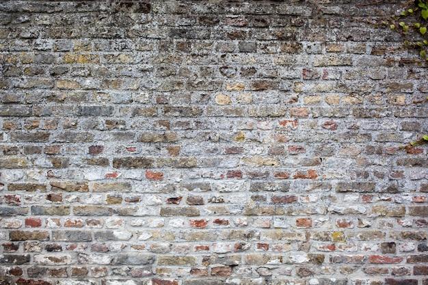 Fundo de parede de tijolos cinza velho Foto Premium