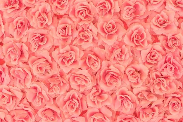 Fundo de rosas Foto gratuita