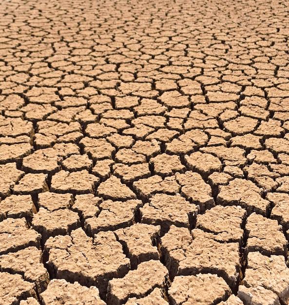 Fundo de terra seca e rachada Foto Premium