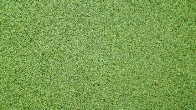 Fundo de textura de grama Foto gratuita