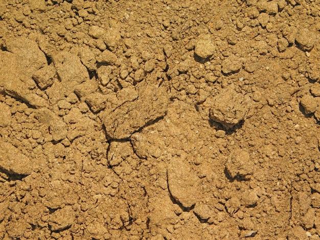 Fundo de textura de solo ao ar livre Foto gratuita