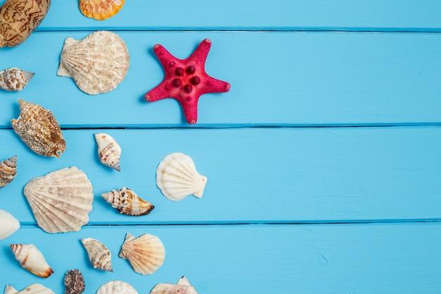 Fundo de verão, conchas sobre fundo azul de madeira Foto Premium