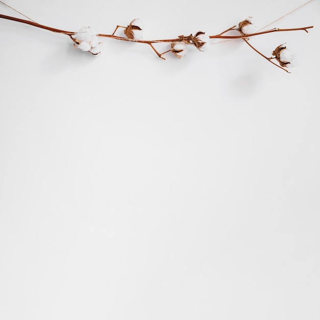 Fundo decorativo com filial Foto gratuita