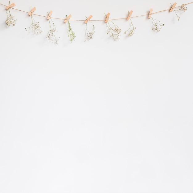 Fundo decorativo com linha de roupas Foto gratuita