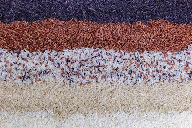 Fundo do alimento com vista superior de cinco fileiras do arroz. Foto Premium