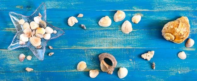 Fundo do mar tropical. conchas diferentes, em uma tigela de vidro em forma de estrela do mar nas placas azuis, vista superior. espaço livre para inscrições. tema de verão. bandeira Foto Premium