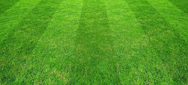 Fundo do teste padrão do campo de grama verde para esportes do futebol e do futebol. Foto Premium