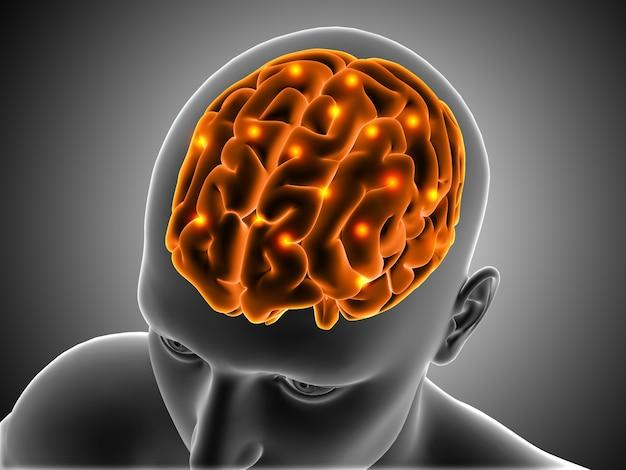 Fundo médico 3d com figura masculina com cérebro destacado Foto gratuita