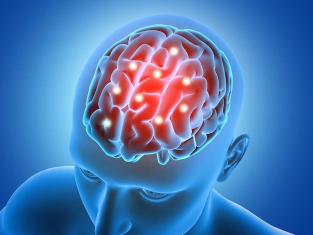 Fundo médico 3d com figura masculina com partes do cérebro destacadas Foto gratuita