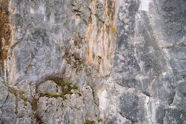 Fundo rochoso cinzento rochoso bonito com musgos e líquenes. Foto Premium