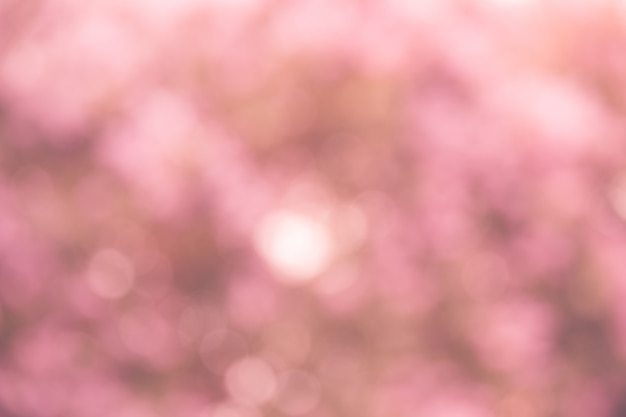 Fundo rosa bokeh Foto Premium
