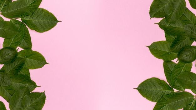 Fundo rosa com folhas botânicas decorativas Foto gratuita