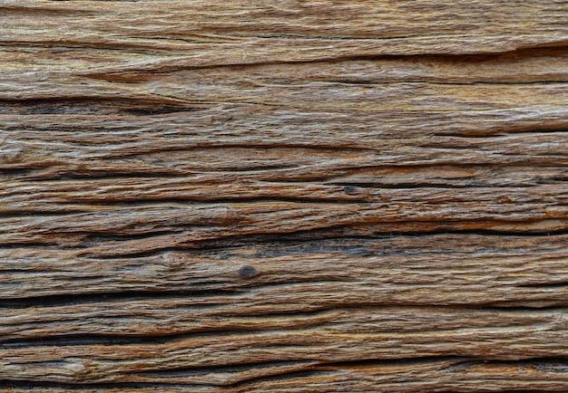 Fundo velho da textura da natureza do tronco de árvore Foto Premium