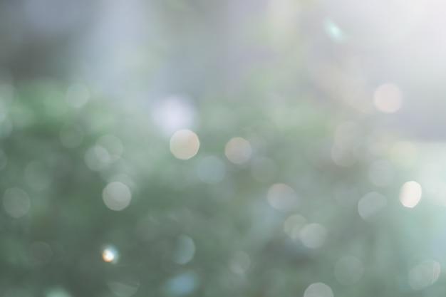 Fundo verde borrado da natureza com luz natural com espaço da cópia. Foto Premium