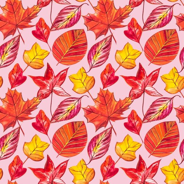 Fundo vermelho e laranja de folhas de outono. ilustração em aquarela padrão sem emenda. Foto Premium