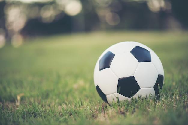 Futebol, ligado, campo grama, parque Foto gratuita