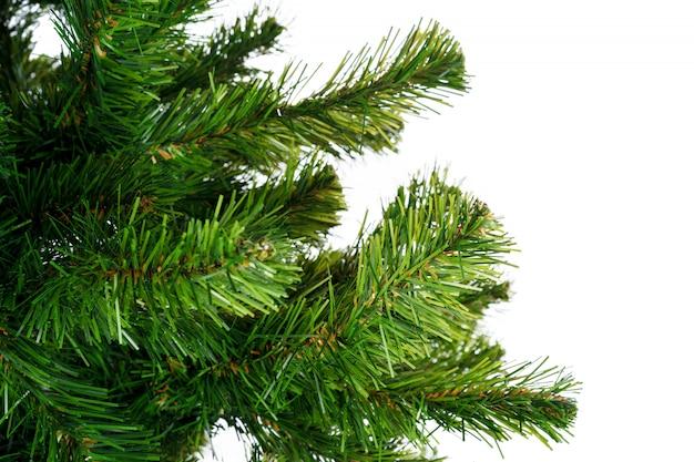 Galhos de árvore do abeto fechar-se contra o fundo branco Foto Premium