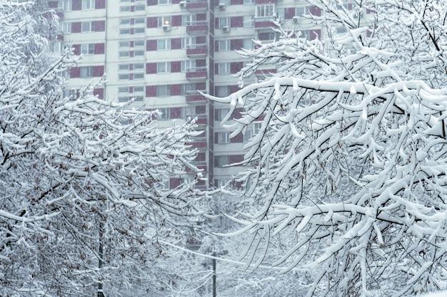 Galhos de árvores cobertos de neve após uma forte nevasca com janelas de construção de casas ao fundo em moscou Foto Premium