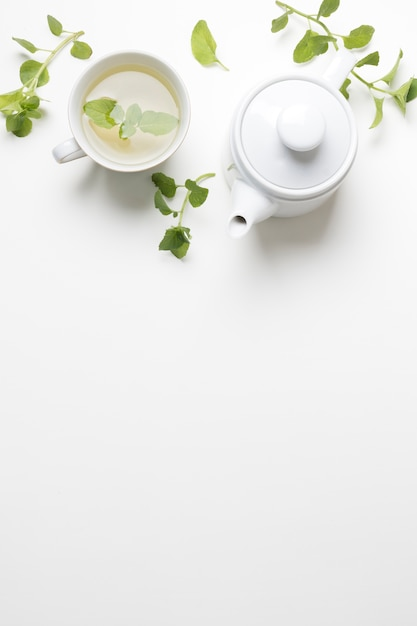 Galhos de ervas frescas de hortelã com xícara de chá e bule isolado no fundo branco Foto gratuita