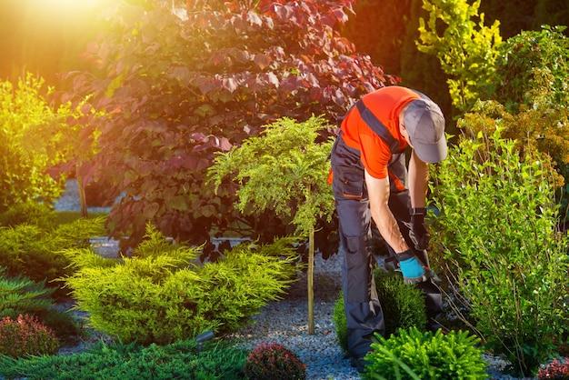 Garden garden works Foto gratuita