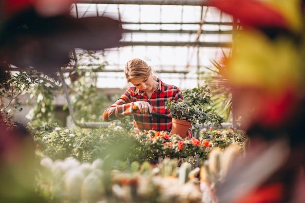 Gardiner mulher cuidando de plantas em uma estufa Foto gratuita