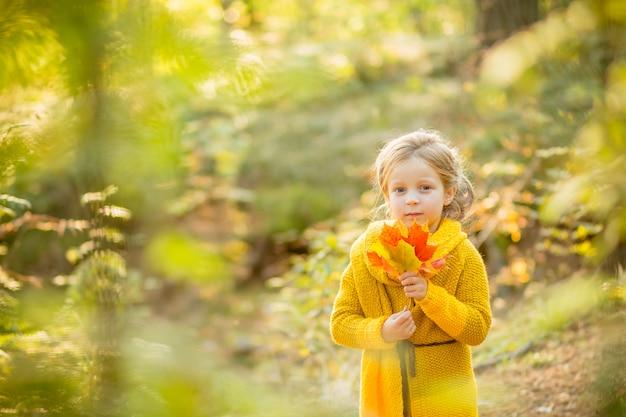 Garota está brincando com folhas que caem. crianças no parque. crianças, caminhadas na floresta de outono. criança da criança sob uma árvore de bordo em um dia ensolarado de outubro. Foto Premium