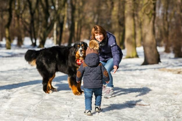 Garotinho chega a uma mulher brincando com o bernese mountain dog Foto gratuita