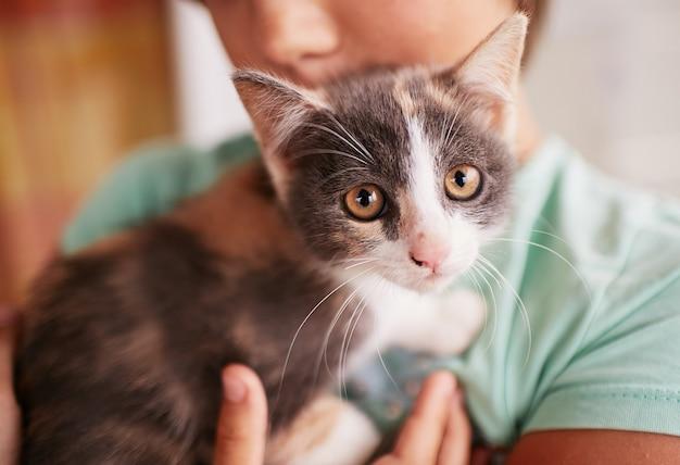 Garotinho detém gatinho preto e branco no ombro Foto gratuita