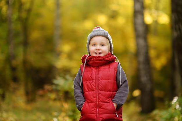 Garotinho durante passeio na floresta em dia ensolarado de outono Foto Premium