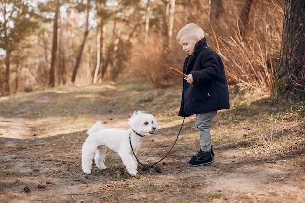 Garotinho em um parque brincando com um cachorro Foto gratuita