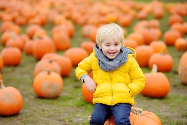 Garotinho em uma fazenda de abóboras no outono Foto Premium