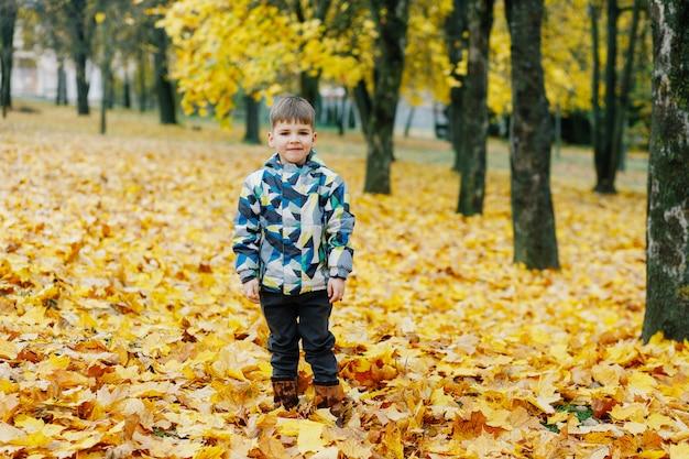 Garotinho no parque outono Foto Premium