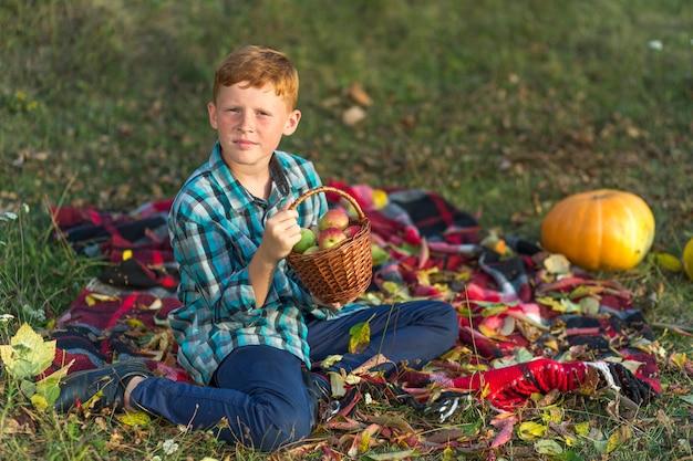 Garoto bonito segurando uma cesta com maçãs Foto gratuita