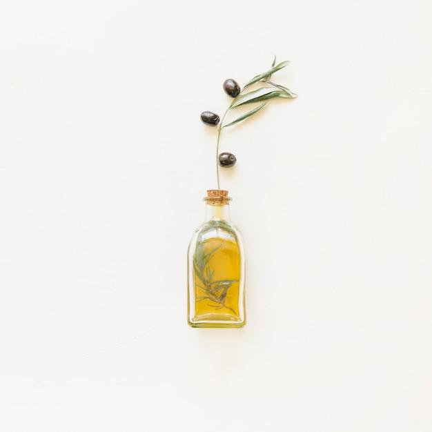 Garrafa de azeite com ramo de oliveira Foto gratuita