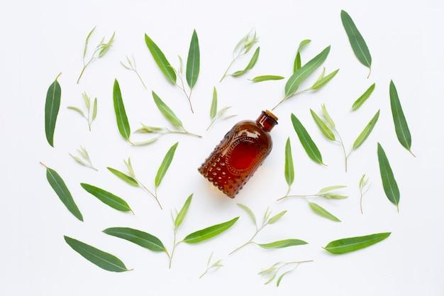 Garrafa de óleo essencial do eucalipto com as folhas no branco. Foto Premium