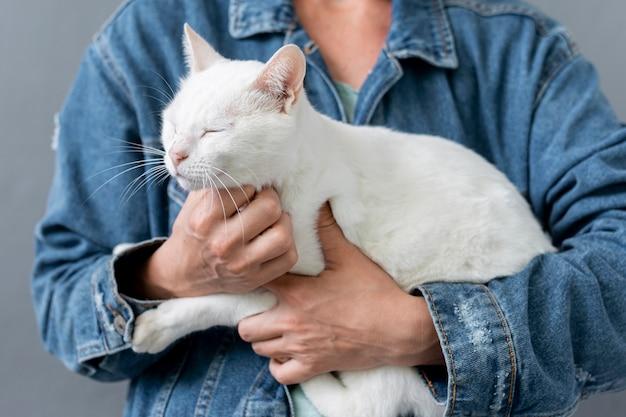 Gato close-up, sentado nos braços do proprietário Foto gratuita