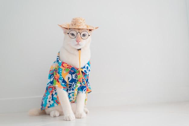 Gato engraçado passa férias, usar camisa de praia e chapéu no conceito de verão Foto Premium